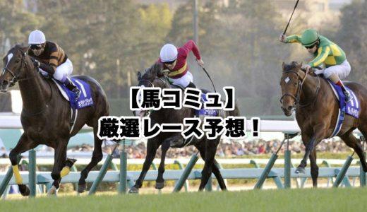 【馬コミュ】11月22日厳選レース予想!