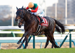 【馬コミュ】 第53回ステイヤーズS G2 レースの見どころ