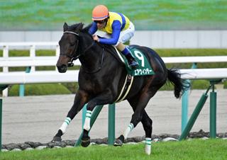 【馬コミュ】 第70回チャレンジカップ G3 レースの見どころ