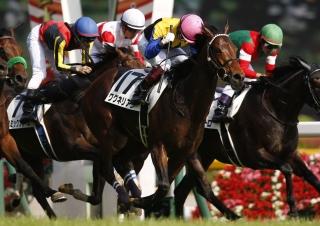 【馬コミュ】 第39回 ジャパンカップ G1 レースの見どころ