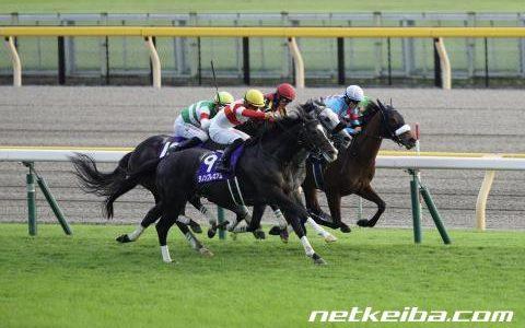 【馬コミュ】第36回 マイルCS (G1) レースの見どころ