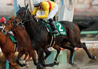 【馬コミュ】 第12回カペラS G3 レースの見どころ