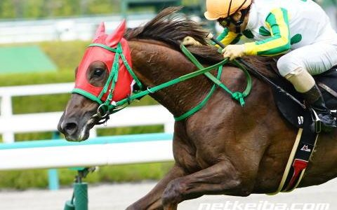 【馬コミュ】 第142回中山大障害 G1 レースの見どころ