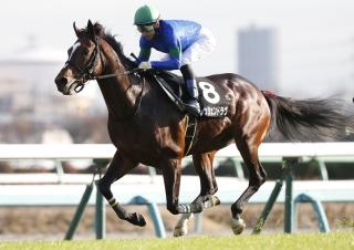 【馬コミュ】 有力馬仕上がり情報 金杯・オープンレース