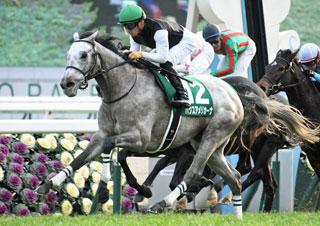 【馬コミュ】 第58回京都金杯 G3 レースの見どころ